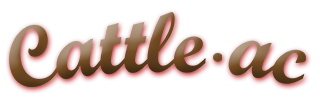 Cattle-ac Restaurant Sidney Montana